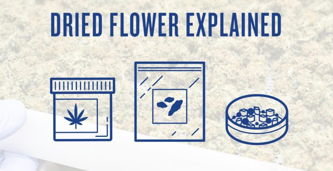Cannabis Dried Flower Explained